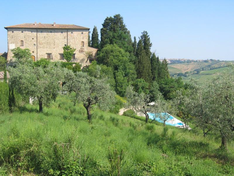 Casa Erta - Image 1 - San Casciano in Val di Pesa - rentals