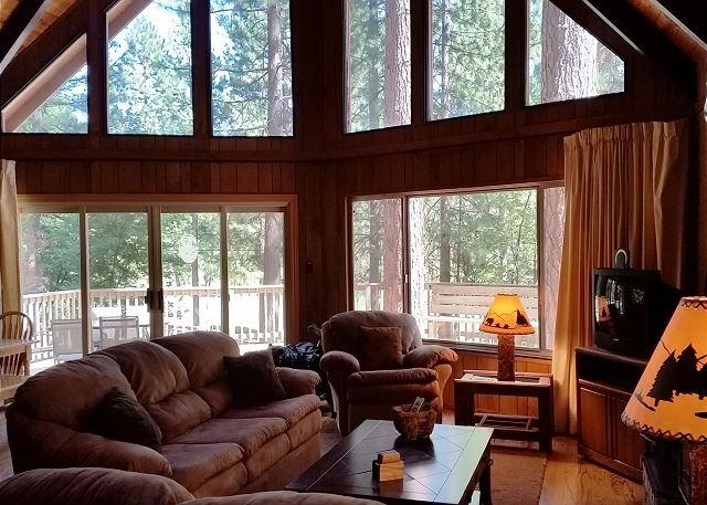 Quintessential mountain cabin with vaulted ceilings - Relax in this classic Chalet style cabin walking distance from Fly-In Lake! - Arnold - rentals