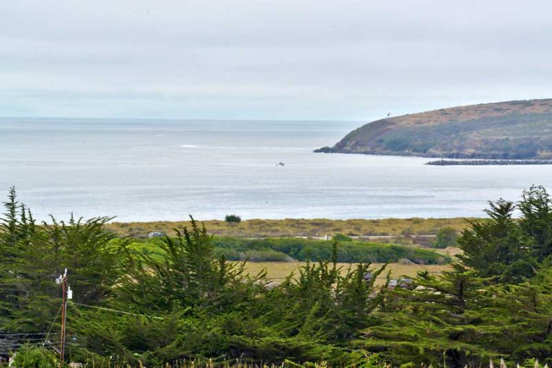 Starboard Cottage - Image 1 - Bodega Bay - rentals