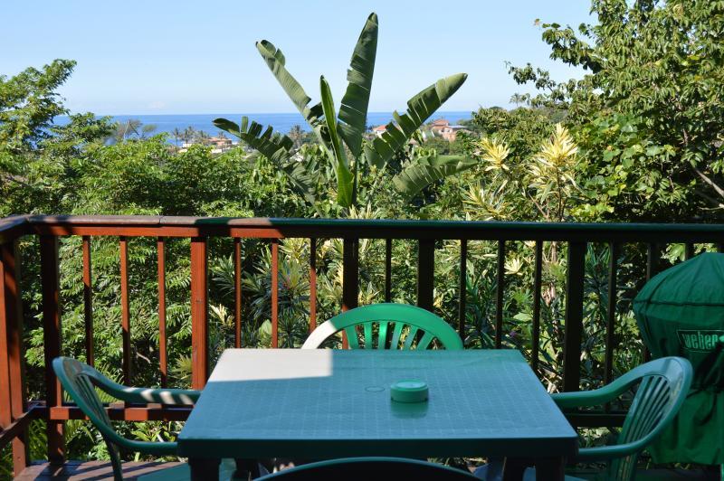 Balcony - Zuider Zee Guest House Log Cabin 'Treetops' - Salt Rock - rentals