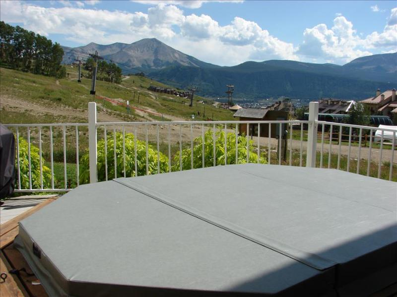 Fabulous Ski In/out Condo,On the Slope!  Steps to Base Area/hot Tub. 6th nt free - Image 1 - Crested Butte - rentals