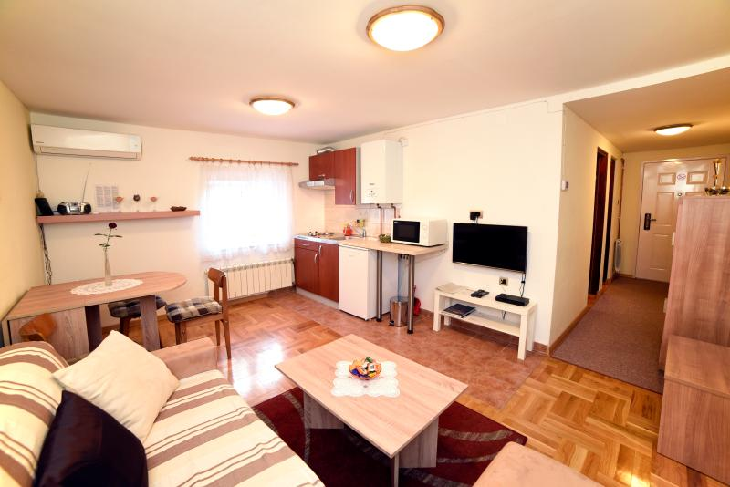 In center of Zagreb with big garden,free parking - Image 1 - Zagreb - rentals