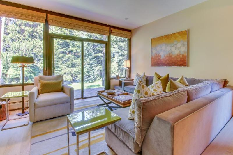 Colorful chalet  on riverfront w/shared pool & hot tub - close to ski slopes - Image 1 - Vail - rentals