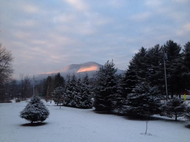 Southern View of Dorset Peak from the yard - 4 Season Fun So Vermonts Beautiful Log Cabin - Mount Tabor - rentals