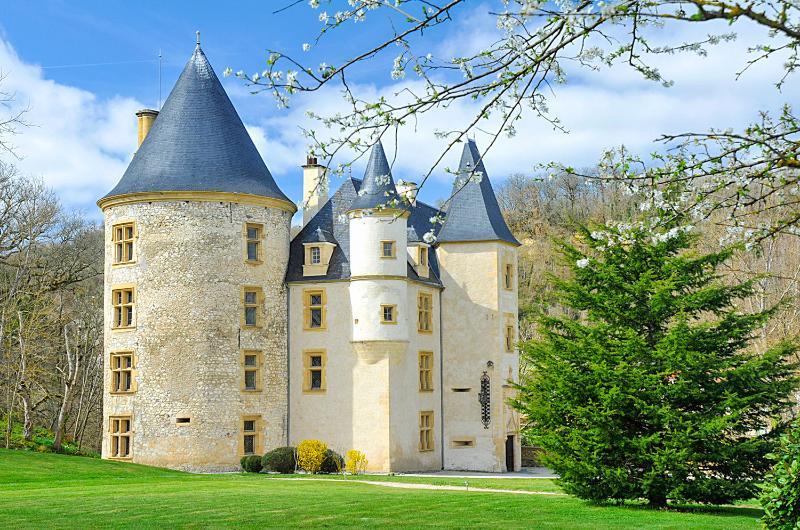 Chateau De Montpezat - Image 1 - Saint-Martory - rentals