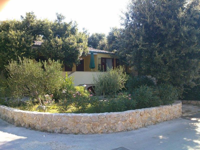house - 4467 A2(4+1) - Petrcane - Petrcane - rentals