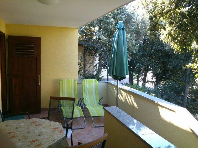 A2(4+1): terrace - 4467 A2(4+1) - Petrcane - Petrcane - rentals