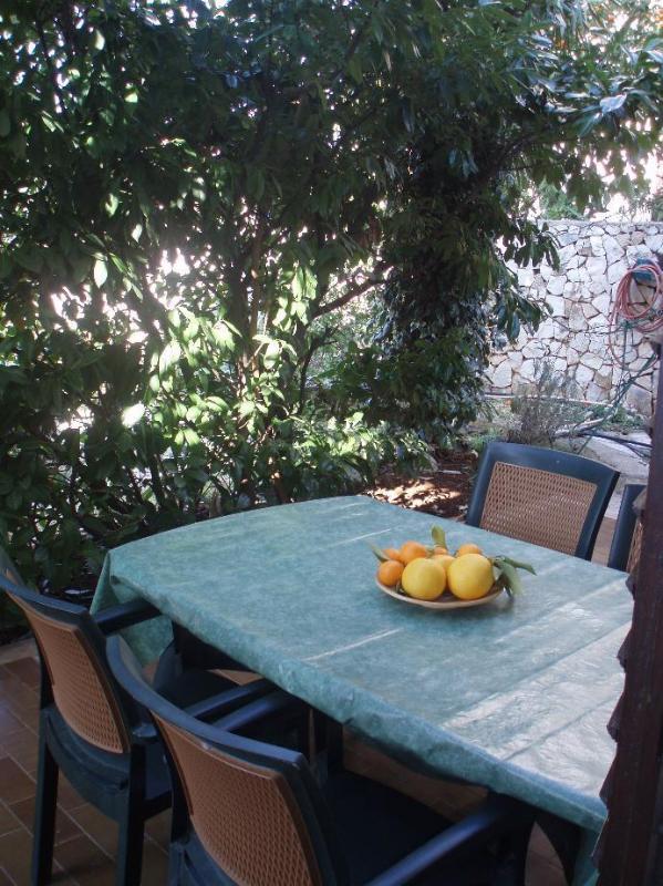 A1(2+1): terrace - 5121  A1(2+1) - Okrug Gornji - Okrug Gornji - rentals