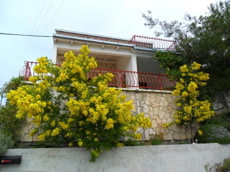 house - 5444  A1(4) - Cove Rukavac - Rukavac - rentals