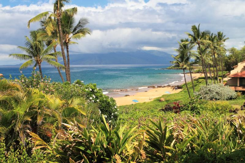 MAKENA SURF RESORT, #C-102 - Image 1 - Wailea - rentals