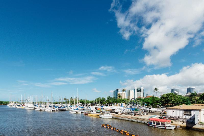 Premium Ocean View Condo-Newly Remodeled-Best Loca - Image 1 - Honolulu - rentals