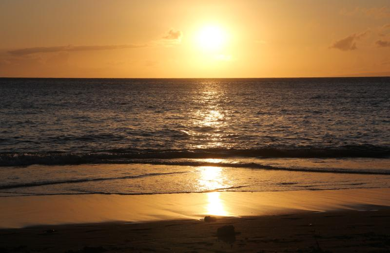 Don't miss our nightly sunset shows! - Valley Isle Resort 401 & 402 by Sunshine & Rainbow - Lahaina - rentals