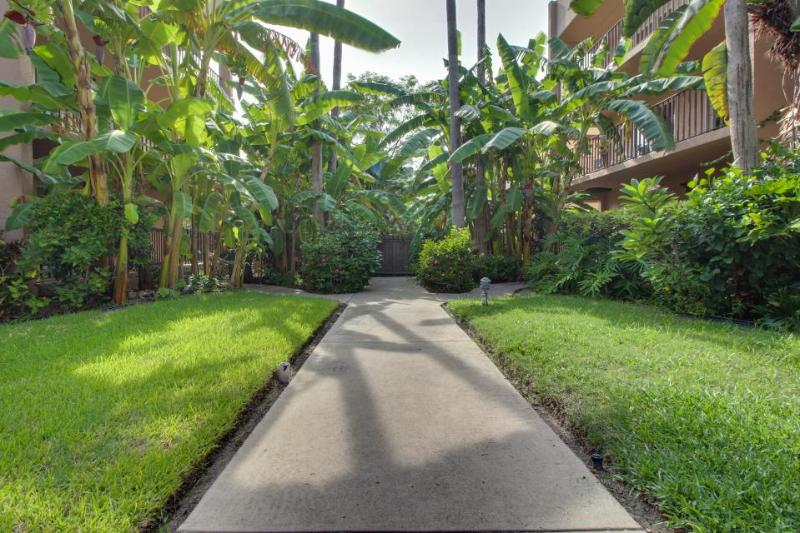 Unobstructed beach view, pool, hot tub, & tropical gardens! - Image 1 - South Padre Island - rentals