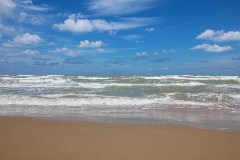 Dog-friendly, oceanside condo w/shared pool & hot tub access! - Image 1 - South Padre Island - rentals
