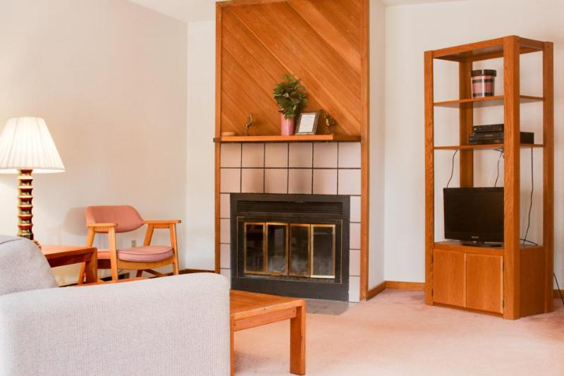 Dog-friendly w/ fireplace, private sauna, mountain views, minutes to the slopes! - Image 1 - West Dover - rentals