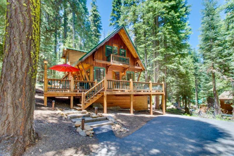 Gorgeous, dog-friendly lodge w/ loft, near beach & skiing! - Image 1 - Homewood - rentals