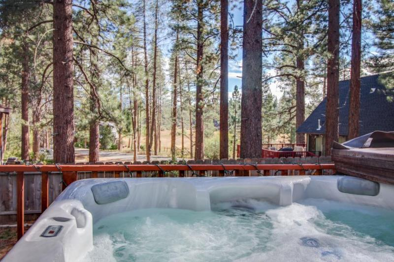 Hot tub, game room, deck with grill, and centrally located! - Image 1 - South Lake Tahoe - rentals