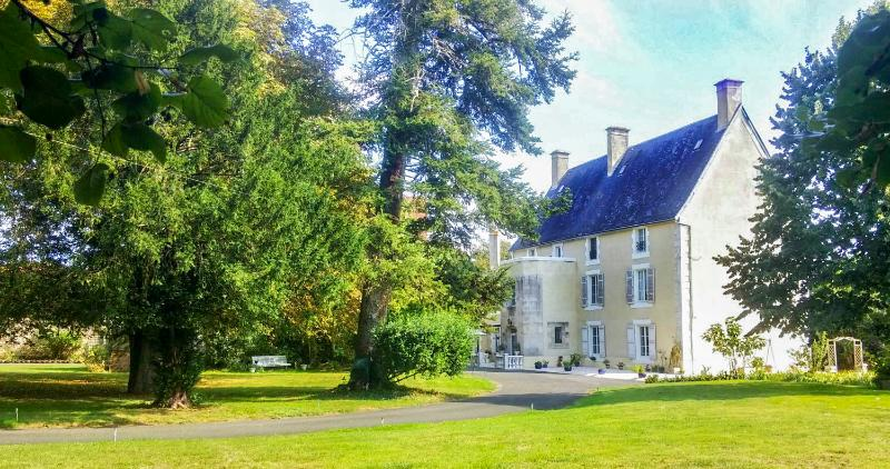 Chateau de Caillaud - Image 1 - Ardilleux - rentals