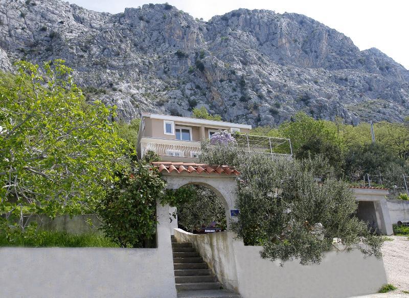 house - 7923  A1(8+2) - Borak - Omis - rentals