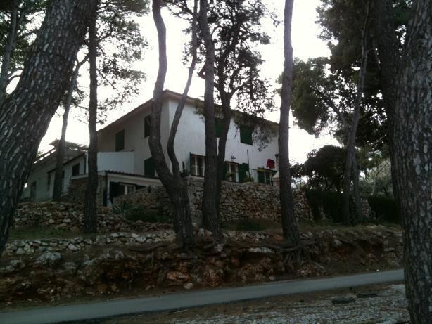 house - 8016  A1(4)  - Jelsa - Jelsa - rentals