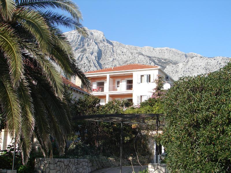 house - 01017OREB A4(2+1) - Orebic - Orebic - rentals