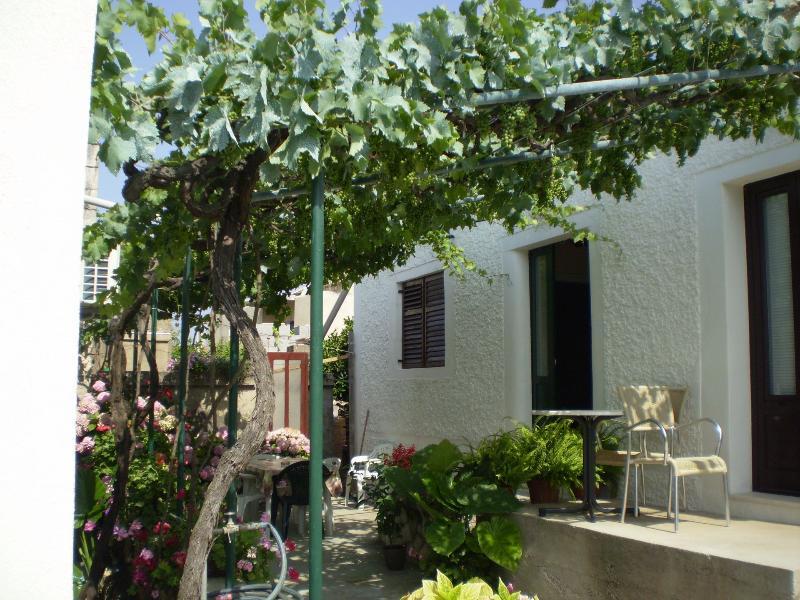 house - 00703SUCU H1(4+1) - Sucuraj - Sucuraj - rentals