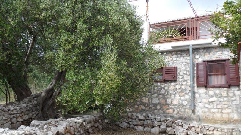 house - 35704 H(7) - Drvenik Mali (Island Drvenik Mali) - Drvenik Mali - rentals