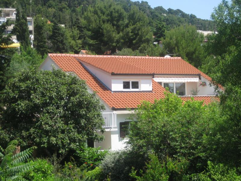 house - 2966 A1(4+2) - Split - Split - rentals