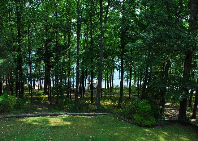 View - Charming and charismatic 3 bedroom lakefront cottage! - McHenry - rentals