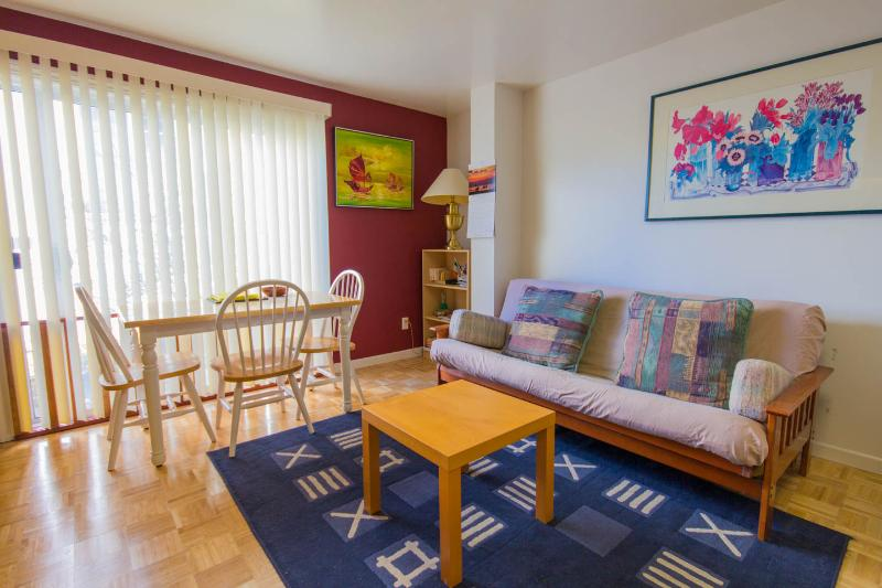 Large studio apt near Golden Gate Park and Beaches - Image 1 - San Francisco - rentals
