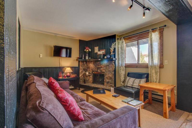 Close to base area, pool/hot tub access, great view of Mt CB - Image 1 - Crested Butte - rentals
