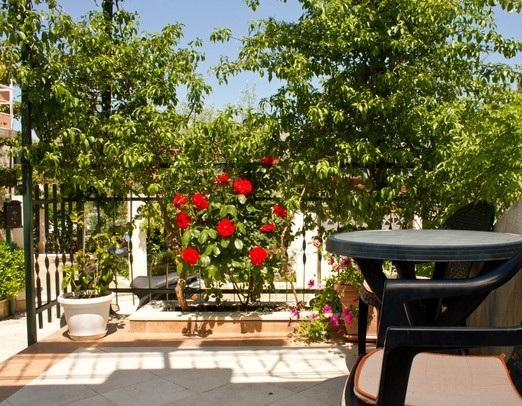 garden terrace - 5849  A1(3+1) - Split - Split - rentals
