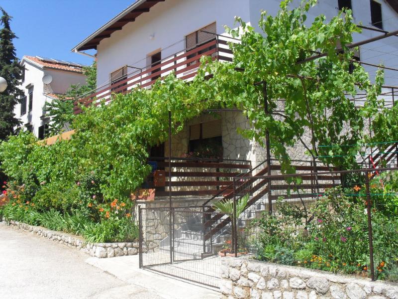 house - 35393 A1(6+2) - Mali Losinj - Mali Losinj - rentals