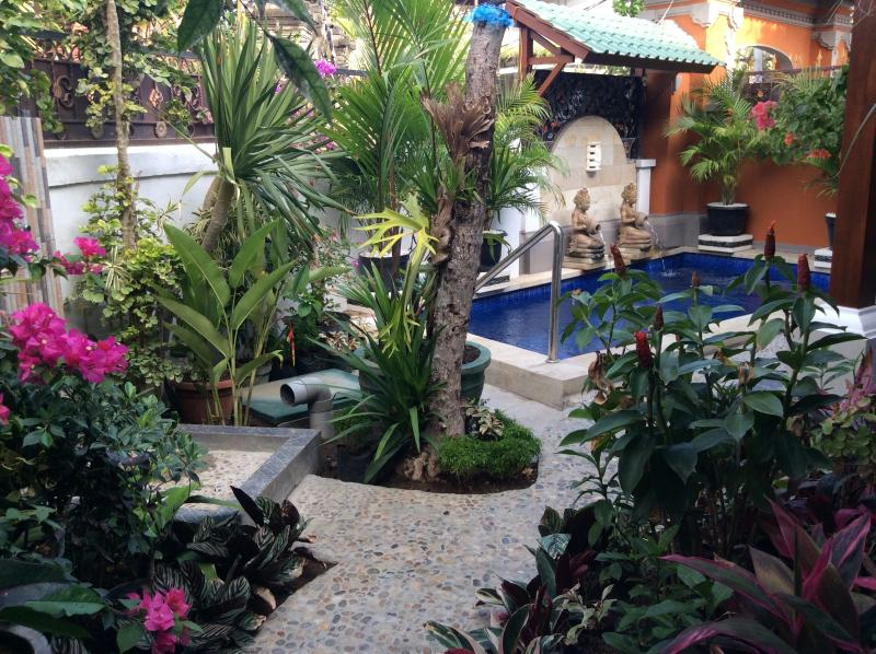 View of pool and part of the garden area - Absolute Gem 1 bedroom villa, private pool - Sanur - rentals