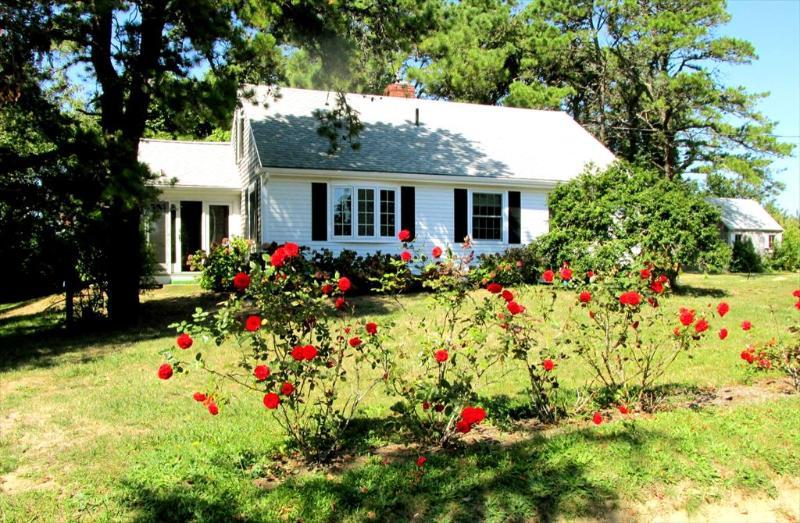 Property 80840 - East Orleans Vacation Rental (80840) - East Orleans - rentals