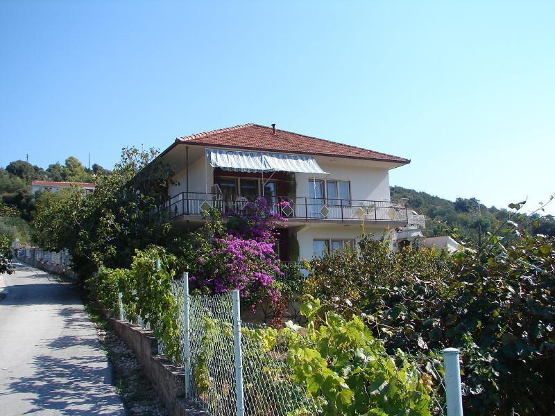 house - 02007VINI  A1(2+1) - Vinisce - Vinisce - rentals