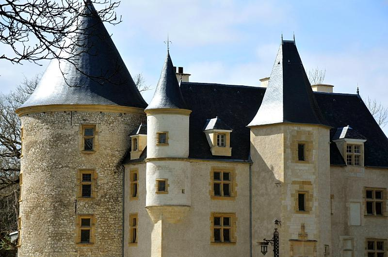 1 - Chateau Saint Martory - Saint-Martory - rentals