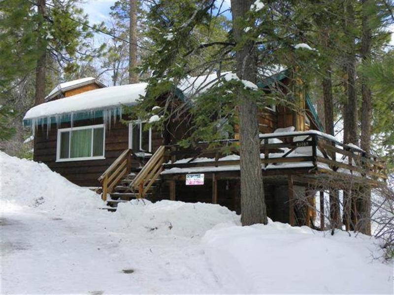 Grizzly Bear - Image 1 - City of Big Bear Lake - rentals