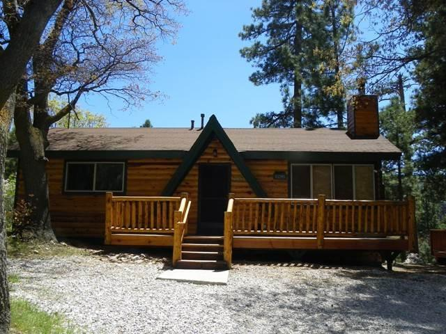 Moonridge Cabin With A View - Image 1 - City of Big Bear Lake - rentals