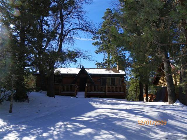 Moonridge Cabin With A View - Image 1 - City of Big Bear Lake - rentals