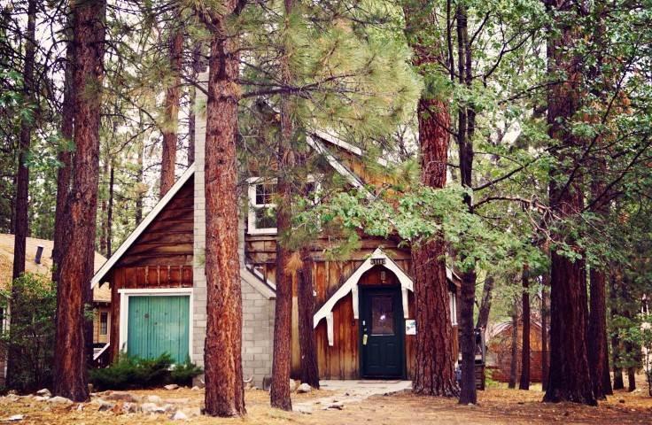 Peaceful Retreat - Image 1 - City of Big Bear Lake - rentals