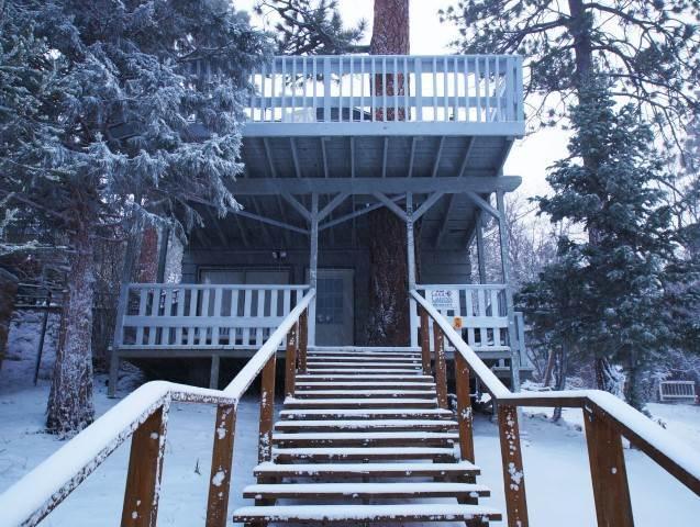 Tree House - Image 1 - Sugarloaf - rentals