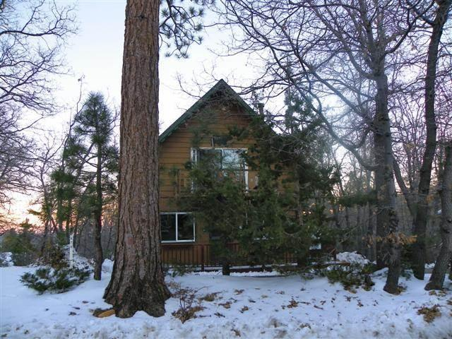 Wolf Road Retreat - Image 1 - Big Bear Area - rentals