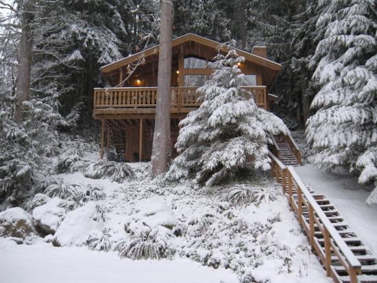 17SL - 17SL Pet Friendly Cabin at Mt. Baker has WiFi - Glacier - rentals