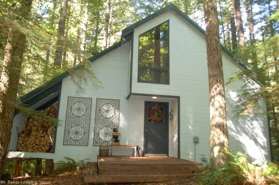 48SL - 48SL Pet Friendly Cabin near Mt. Baker has WiFi - Glacier - rentals