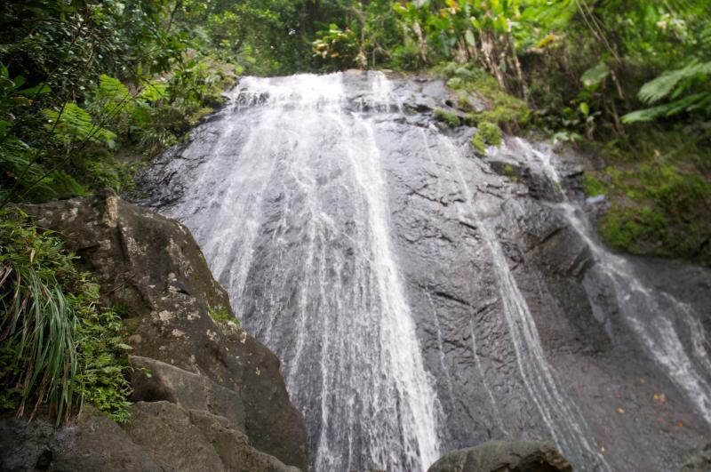 Rain Forest - Villa @ Wyndham Resort w/ Beach, Golf, Tennis +++ - Rio Grande - rentals