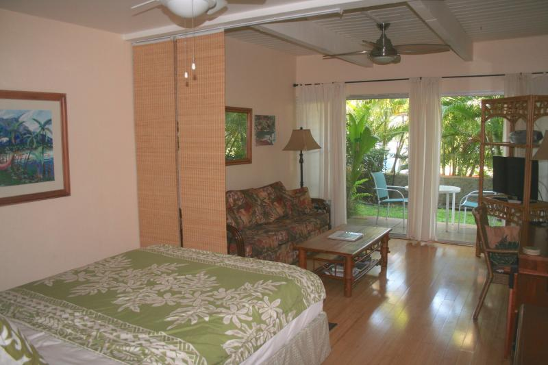Our condo - SPECIAL !!! - Open Nights in December 2016 $69/nt - Kihei - rentals