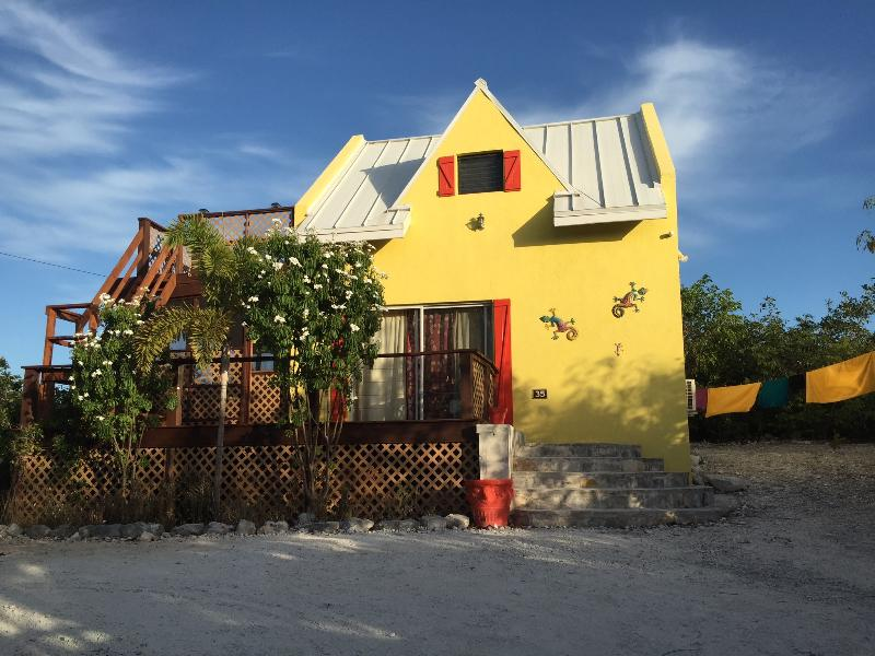 That Lovely Gecko House (GRACE BAY)-Turks & Caicos - Image 1 - Providenciales - rentals