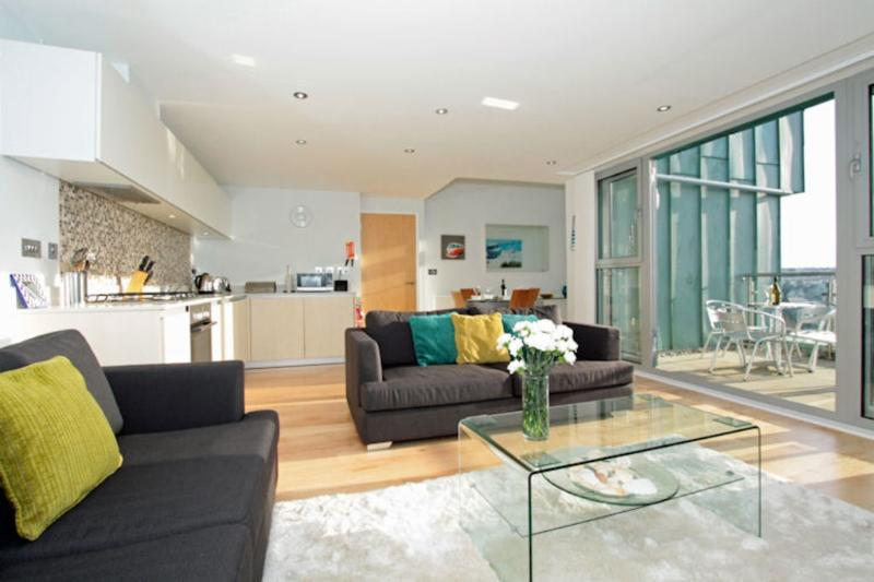 Fistral View, 51 Zinc located in Newquay, Cornwall - Image 1 - Newquay - rentals