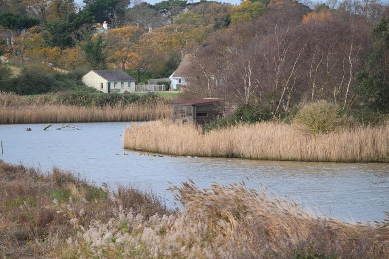 Oystercatcher Cottage 4 located in Seaview, Isle Of Wight - Image 1 - Seaview - rentals